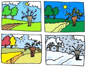 Krajobraz roku