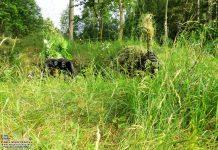 Szkolenie żołnierzy Narodowych Sił Rezerwowych