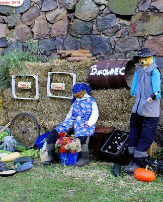 Dożynki Gminne w Bukowcu 2010