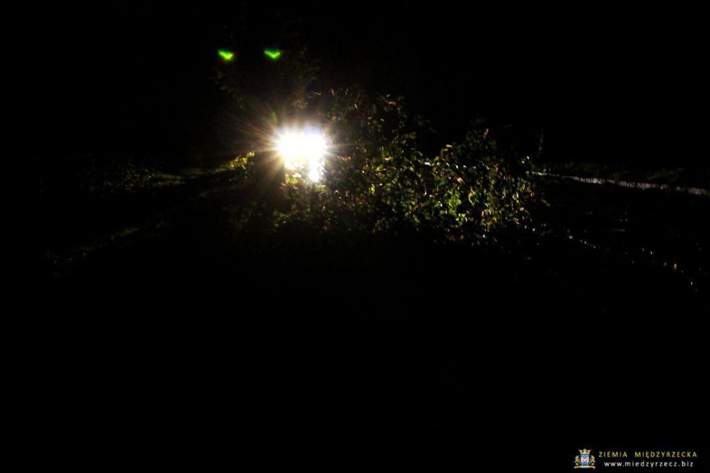 Orkan Ksawery 2017