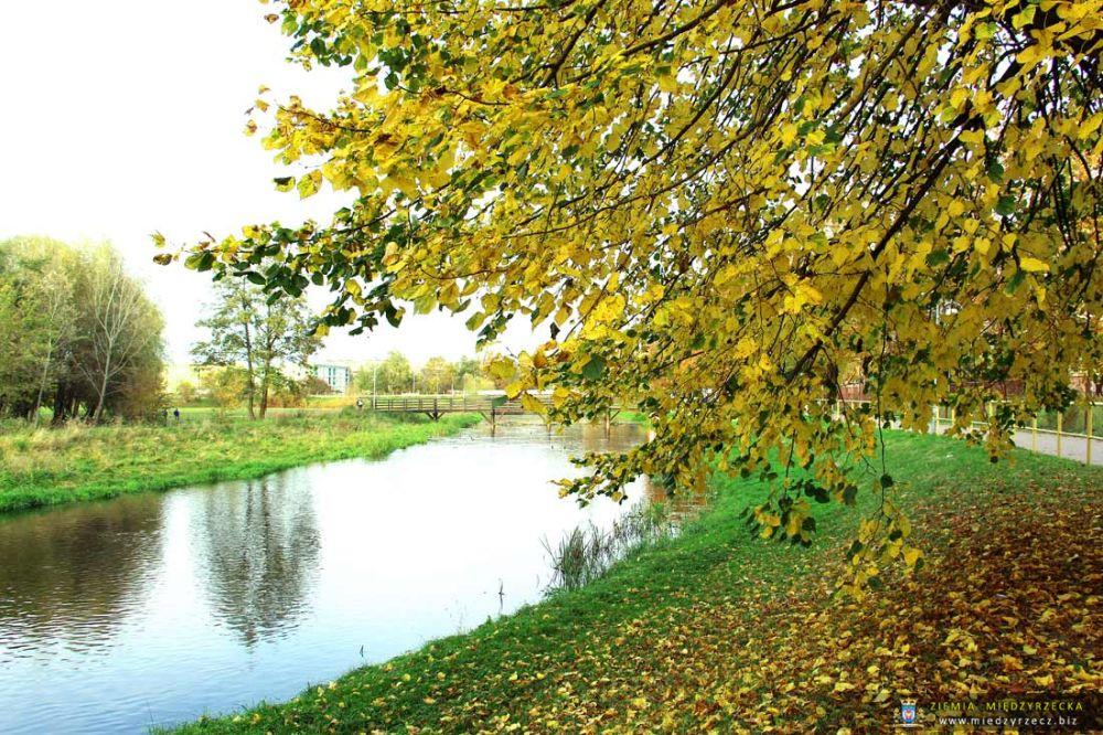 Jesień w Międzyrzeczu