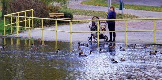 Poziom wody w rzece Obra w Międzyrzeczu