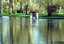 Międzyrzecz - stan wody w Obrze