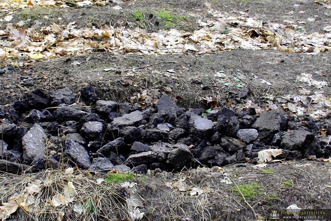 Międzyrzecz: Kto wywozi odpady do lasu?