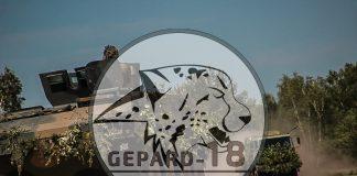 Gepard zaatakował