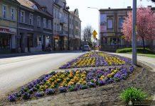 Wiosna w Międzyrzeczu