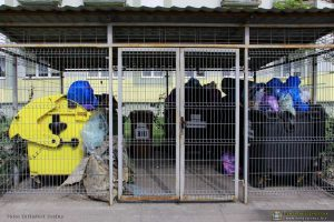 Czy funkcjonujący aktualnie w Międzyrzeczu system gospodarki odpadami komunalnymi jest optymalny?