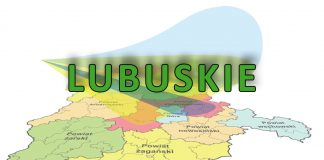Marszałek dla Forbes: Lubuskie to Stany Zjednoczone Polski