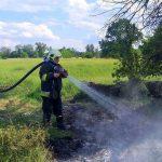 Pożar traw w miejscu ujścia Obry do Warty.