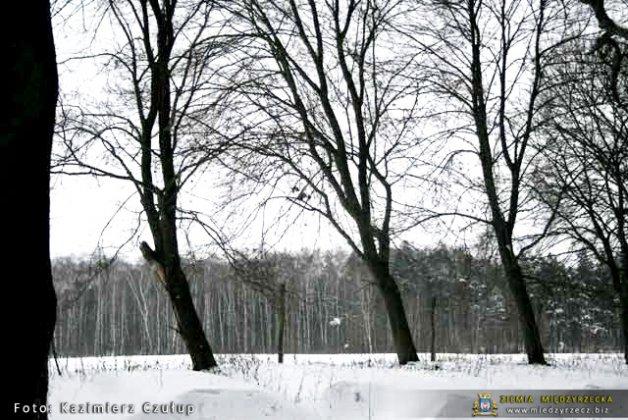 Międzyrzecz Zima 2010 065