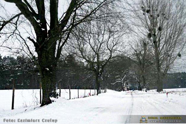 Międzyrzecz Zima 2010 068