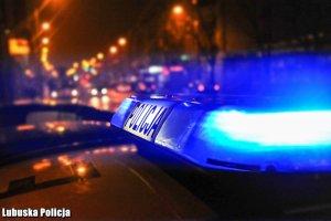 policja pl 001