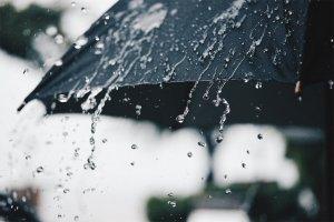 pogoda miedzyrzecz 001
