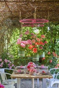2021 geraniums 3000 colourful get together garden 08