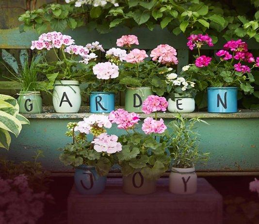 2021 geraniums 3020 diy jars of blooming joy 000