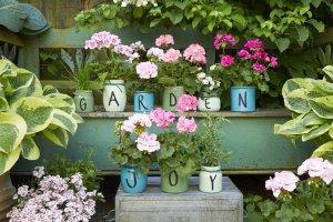 2021 geraniums 3020 diy jars of blooming joy 02