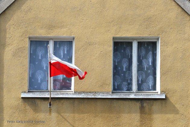 Święto flagi 2021 międzyrzecz 019