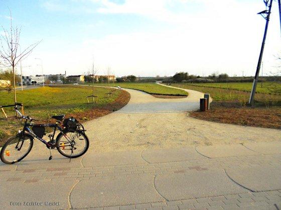 rowerowy międzyrzecz 005
