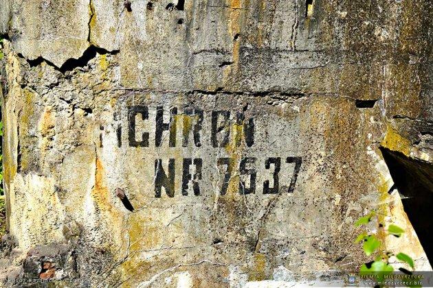 wieża widokowa Świnoujście 131