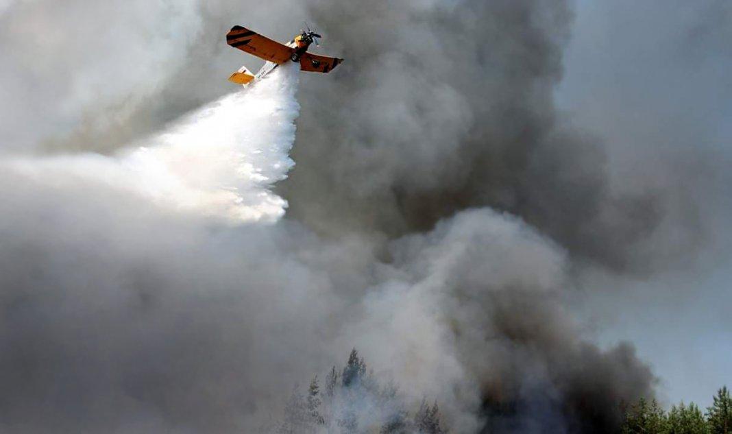 zagrozenie pożarowe w lasach 000