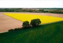 stanowisko społeczne w sprawie polskiego rolnictwa 000