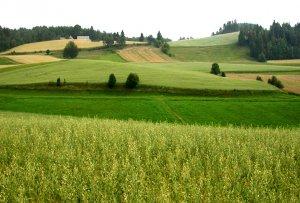 stanowisko społeczne w sprawie polskiego rolnictwa 003